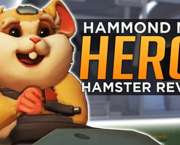 Overtwatch: NEW Hero 28 Revealed! - Hammond The Hamster - overtwatch new hero 28 revealed hammond the hamster