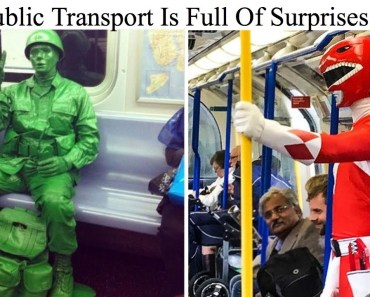 Photos Proving That Public Transport Is Full Of Surprises - photos proving that public transport is full of surprises