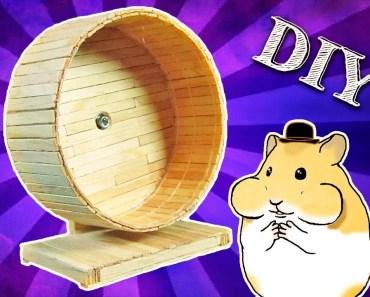 DIY Como fazer uma rodinha de palitos para hamster -