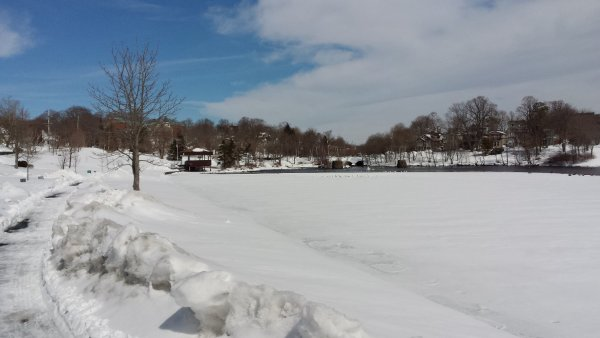 Pond March 30-15