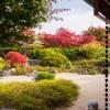 紅葉 筥崎宮・花庭園(2018年11月30日)