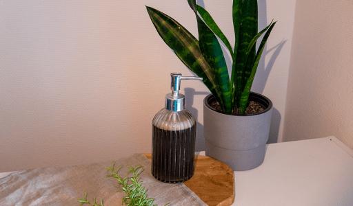 shampoing liquide anti-pelliculaire