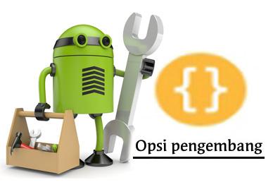 Cara Menampilkan Opsi Pengembang di Android