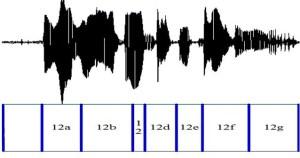 Voice sample
