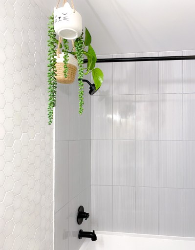 whimiscal hanging planters in a bathroom