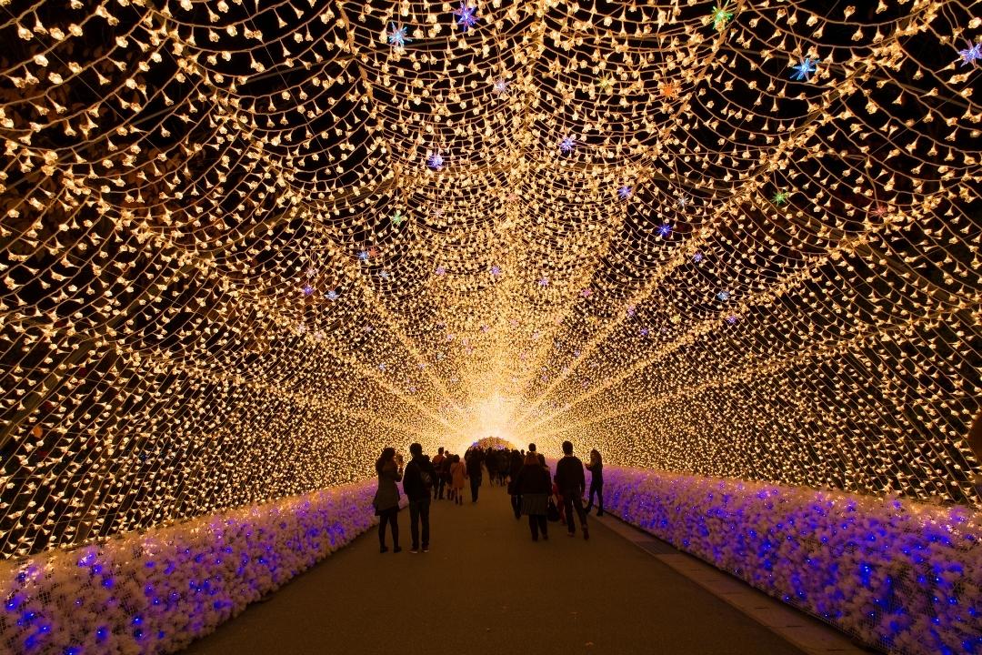 Nabana No Sato Illumination, Japan, Nagoya (Canva)