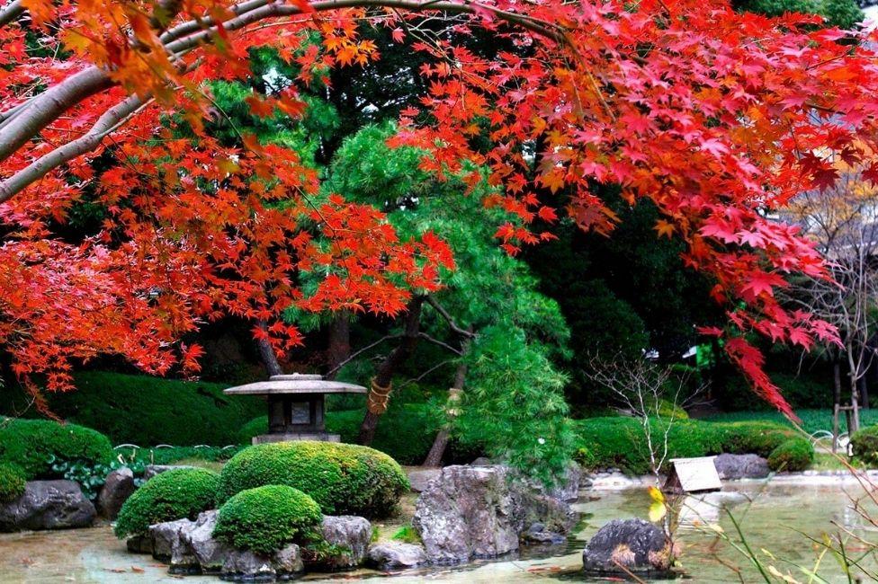 Grand Prince Hotel Takanawa-Garden 2 (O)