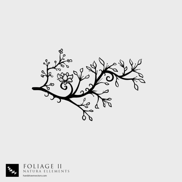 Tree-Branch-Nature-Vector