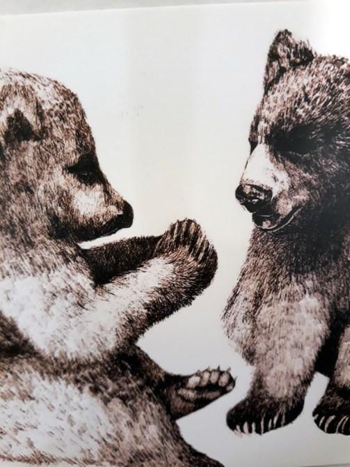T-shirt med björnar