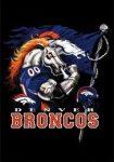 Betting on Denver Broncos Football