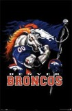 Betting on Denver Broncos Football