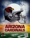 Betting on Arizona NFL Football