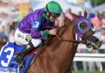 Betting on California Chrome Horse Racing