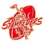 Stampeders Football