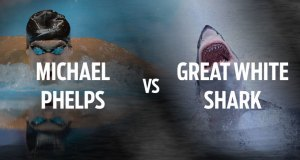 Michael Phelps vs. Great White Shark 4