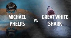 Michael Phelps vs. Great White Shark 2