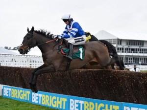 Frodon at Cheltenham Racecourse