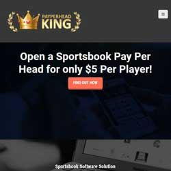 PayPerHeadKing.com Pay Per Head Review