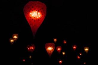 Les illuminations du Parc de la tête d'Or en 2014. (C) Sara Chalbos