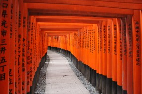 Hundreds of bright red torii sit astride the miles of paths and stairs that go up the mountain at the Fushimi Inari shrine just outside of Kyoto.