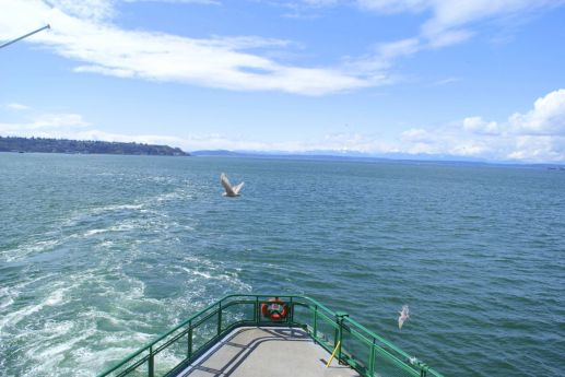 Day Trip: Bainbridge Island, Washington (7)