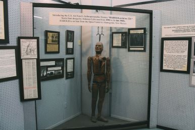 Alien Hunting in Roswell, New Mexico (8)
