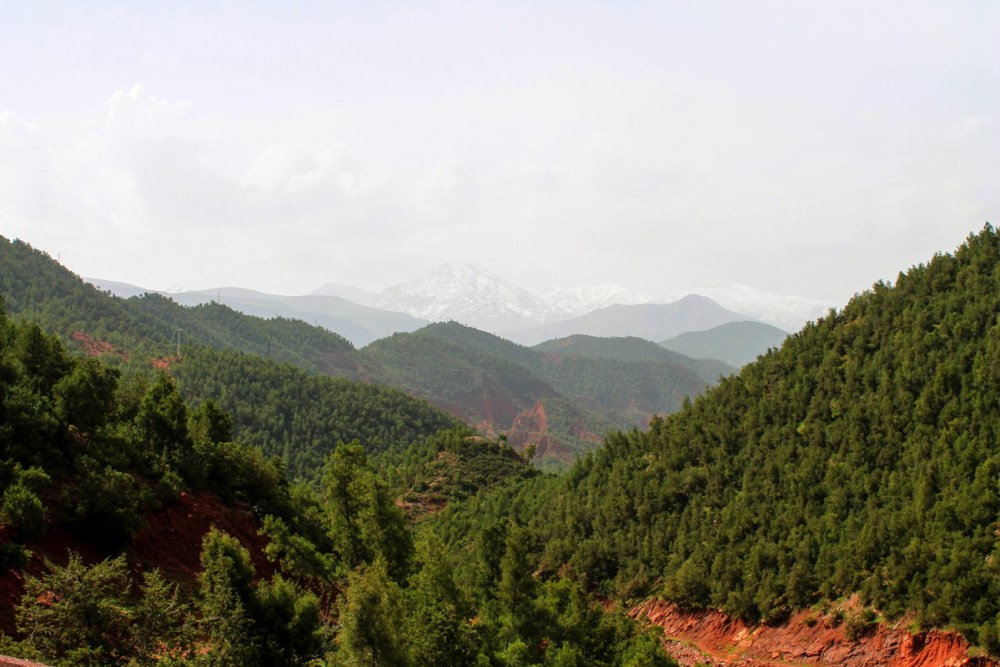 Snow in the Desert? Take a trip up to the Atlas Mountains, Morocco... (5)