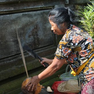 The Woman and The Coconut in Goa Gajah Temple, Bali, Indonesia (8)