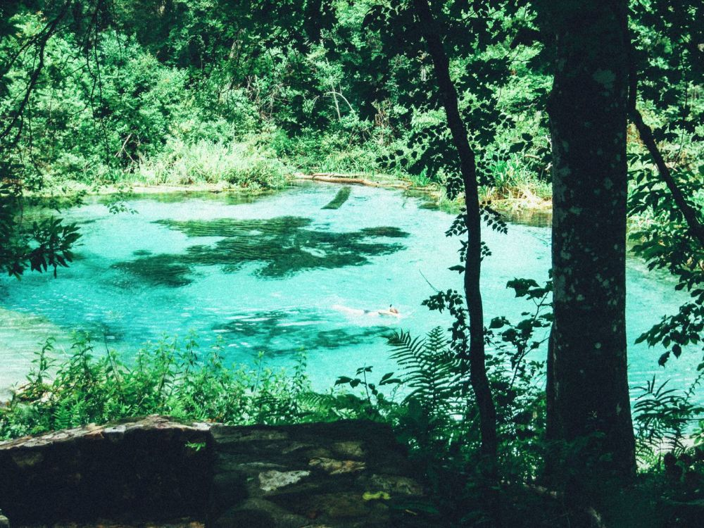 1 Thing You Have To Do In Florida! Tubing Down Ichetucknee River (2)