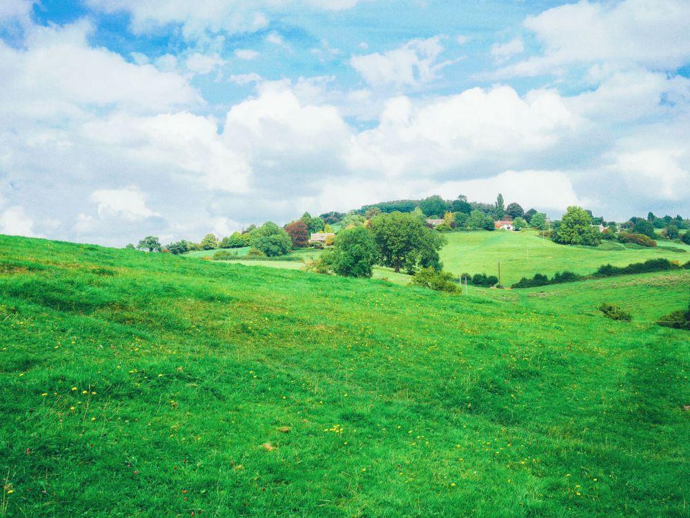 English Countryside Walking (8)