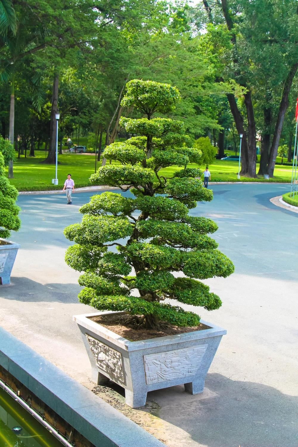 Photo Diary: Visiting Independence Palace in Saigon, Vietnam (18)