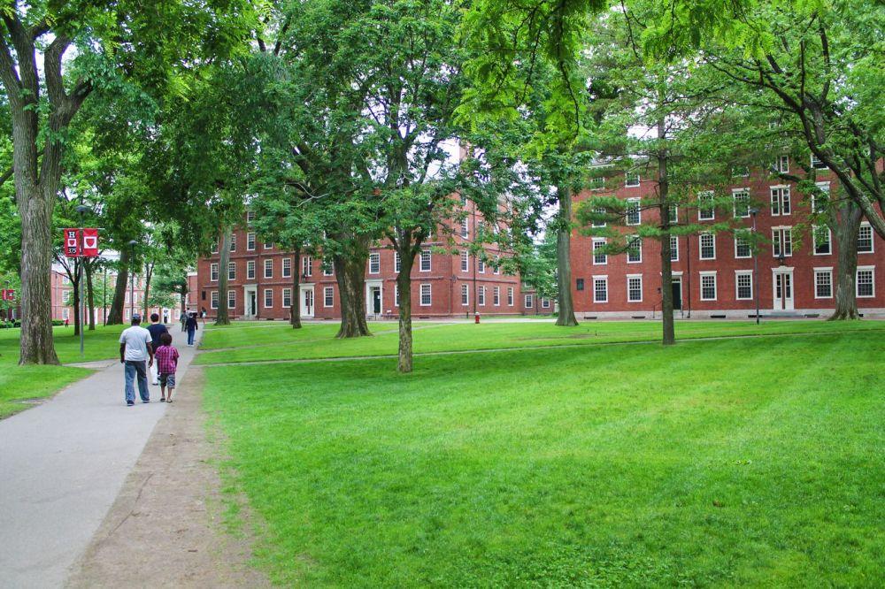 Squirrels, Strawberries And Frozen Yoghurts in Harvard (13)
