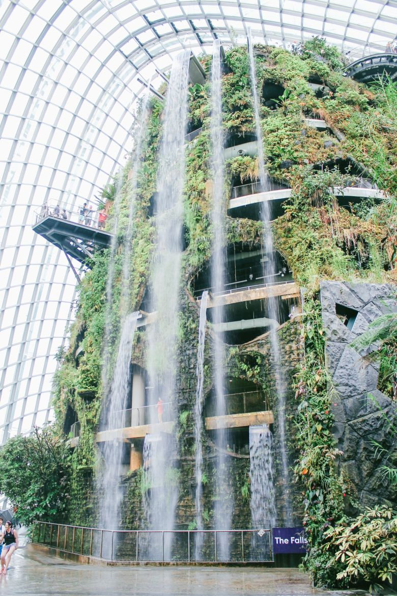 Under The Dome And Into The Forest... In Singapore, Flower Dome and Cloud Forest, Gardens By The Bay (6)