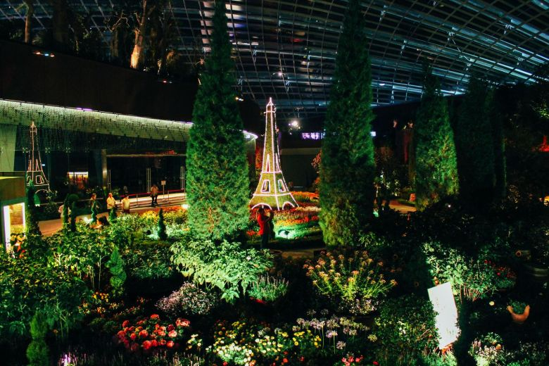 Under The Dome And Into The Forest... In Singapore, Flower Dome and Cloud Forest, Gardens By The Bay (24)