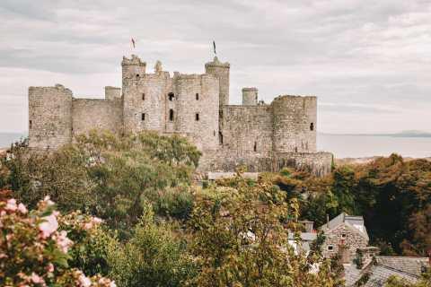 15 Best Castles In Wales To Visit (19)