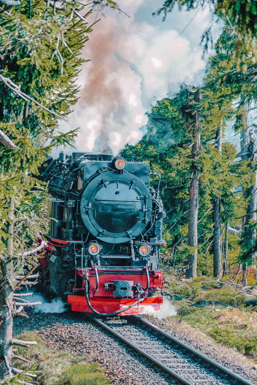 Epic Train Journeys Across The World (6)