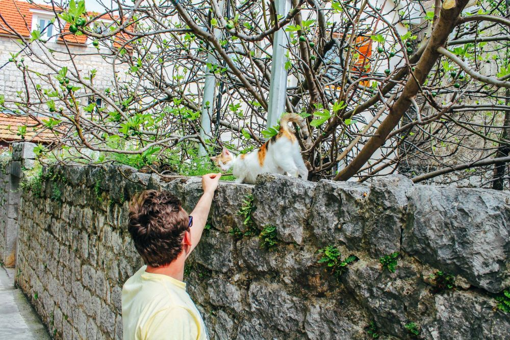 Cave Exploring, Frog Legs and The Old Town Of Sinj In Croatia... (40)