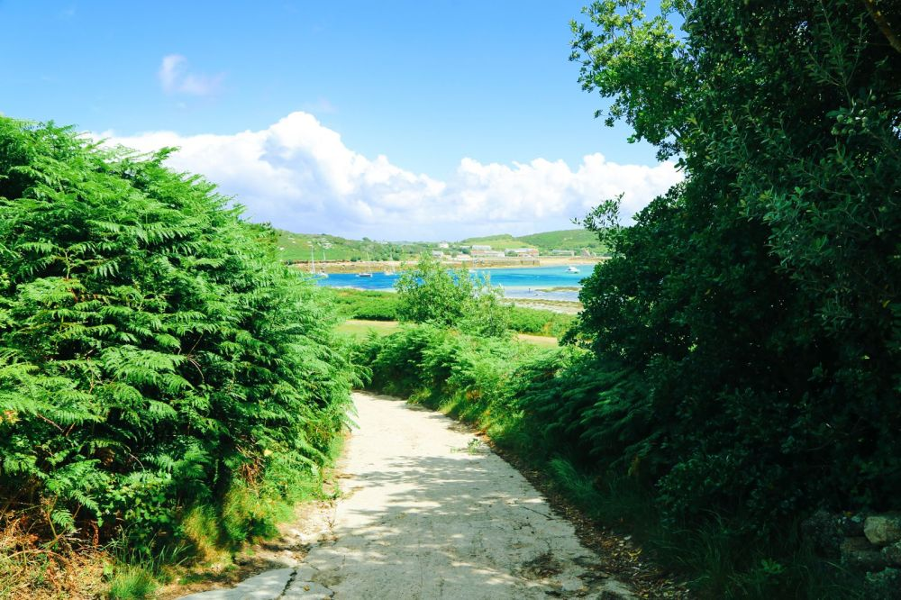 Kayaking in Bryher, Honesty Boxes and Tropical Island Hues... In Bryher Island, Isles of Scilly, UK (44)