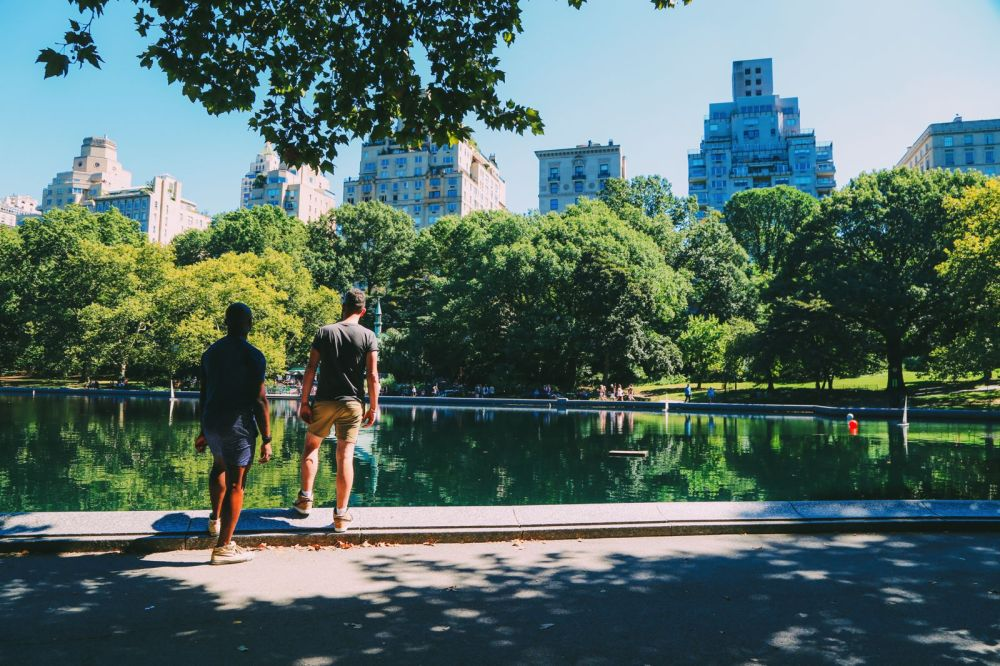 Central Park - A New York Photo Diary (6)