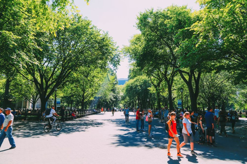 Central Park - A New York Photo Diary (23)