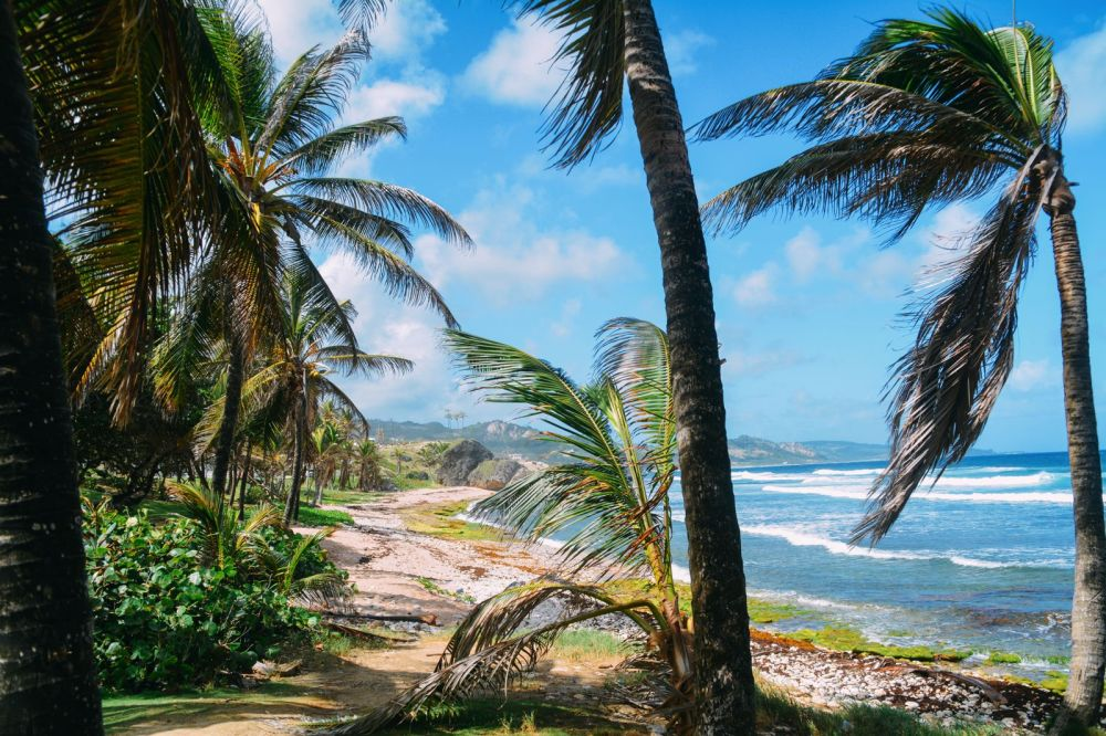 Exploring The Unspoilt Beauty of East Barbados (34)