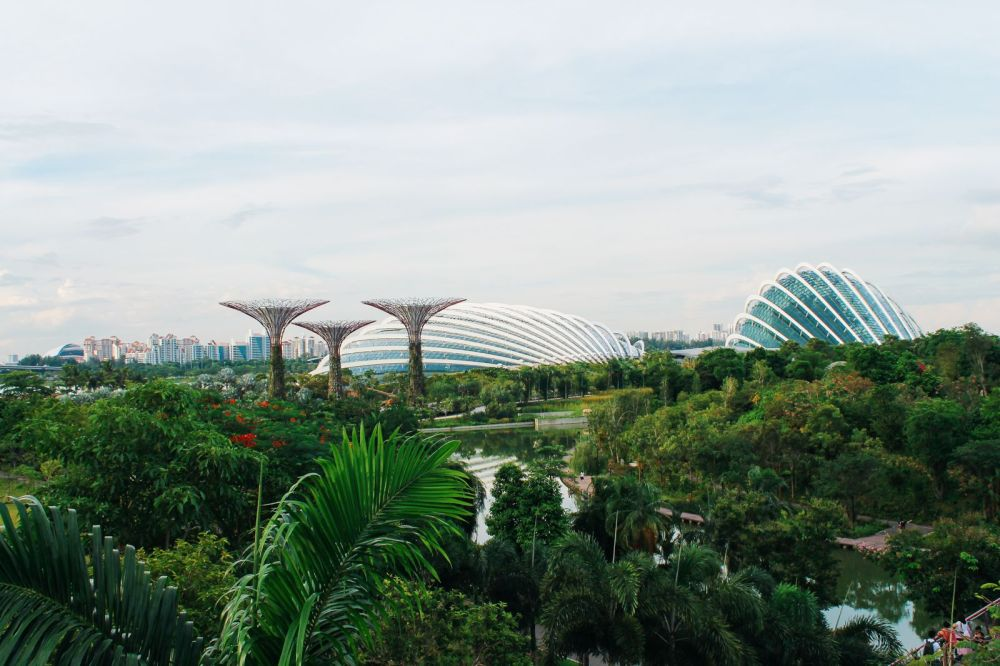 12 Places You Need To Experience In Singapore (41)