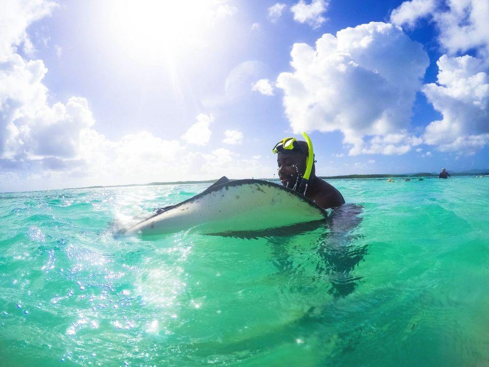 How To Swim With Wild Stingrays In Antigua (35)