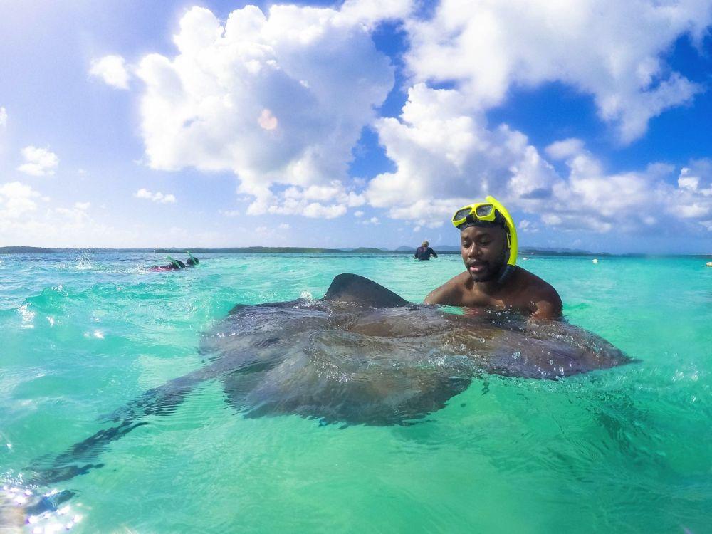 How To Swim With Wild Stingrays In Antigua (34)