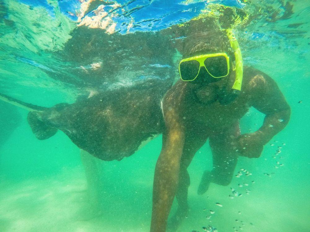 How To Swim With Wild Stingrays In Antigua (20)