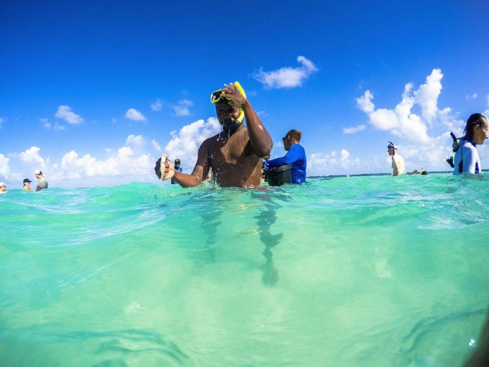How To Swim With Wild Stingrays In Antigua (12)