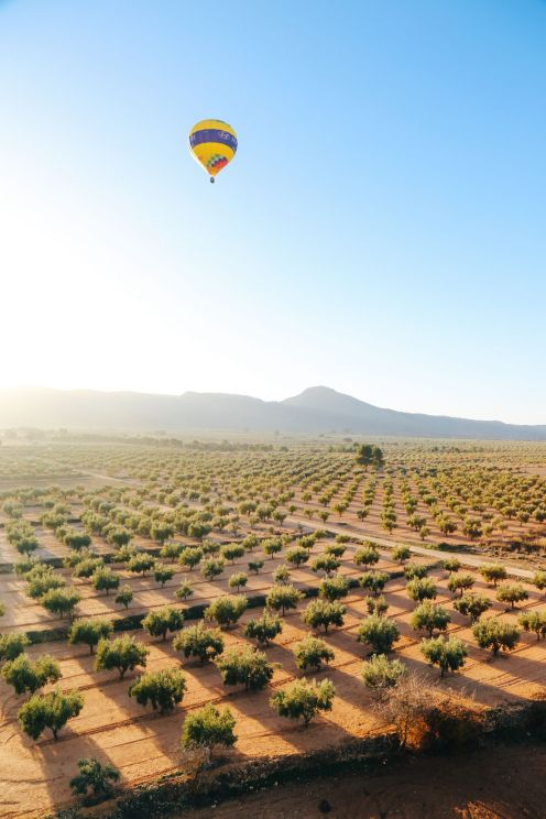 Hot Air Balloon Sunrise... In Sierra De Mariola, Valencia (42)