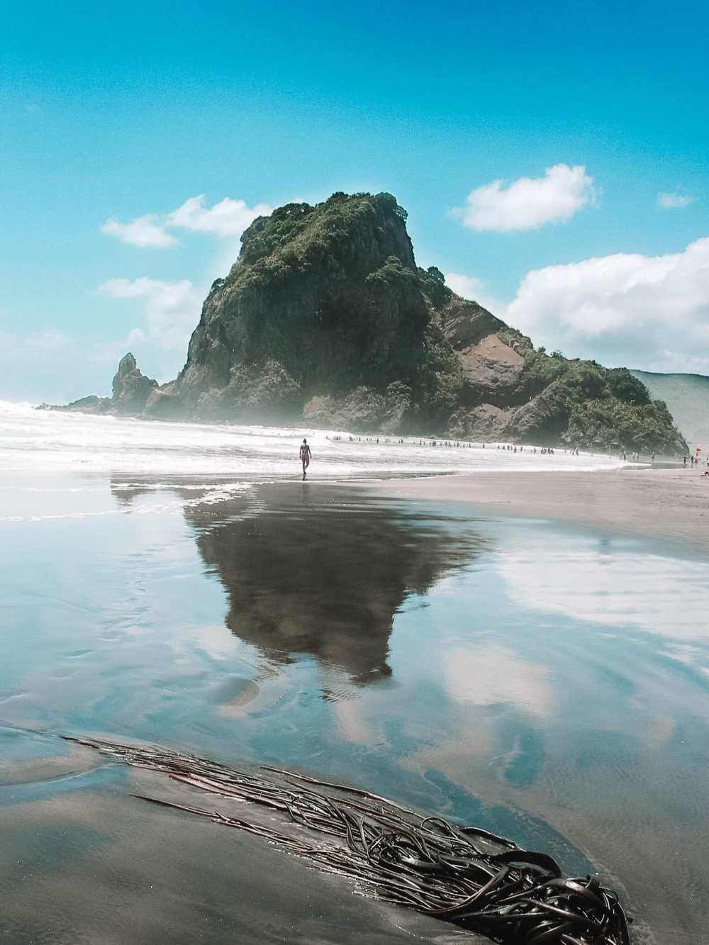 Best Beaches In New Zealand (39)