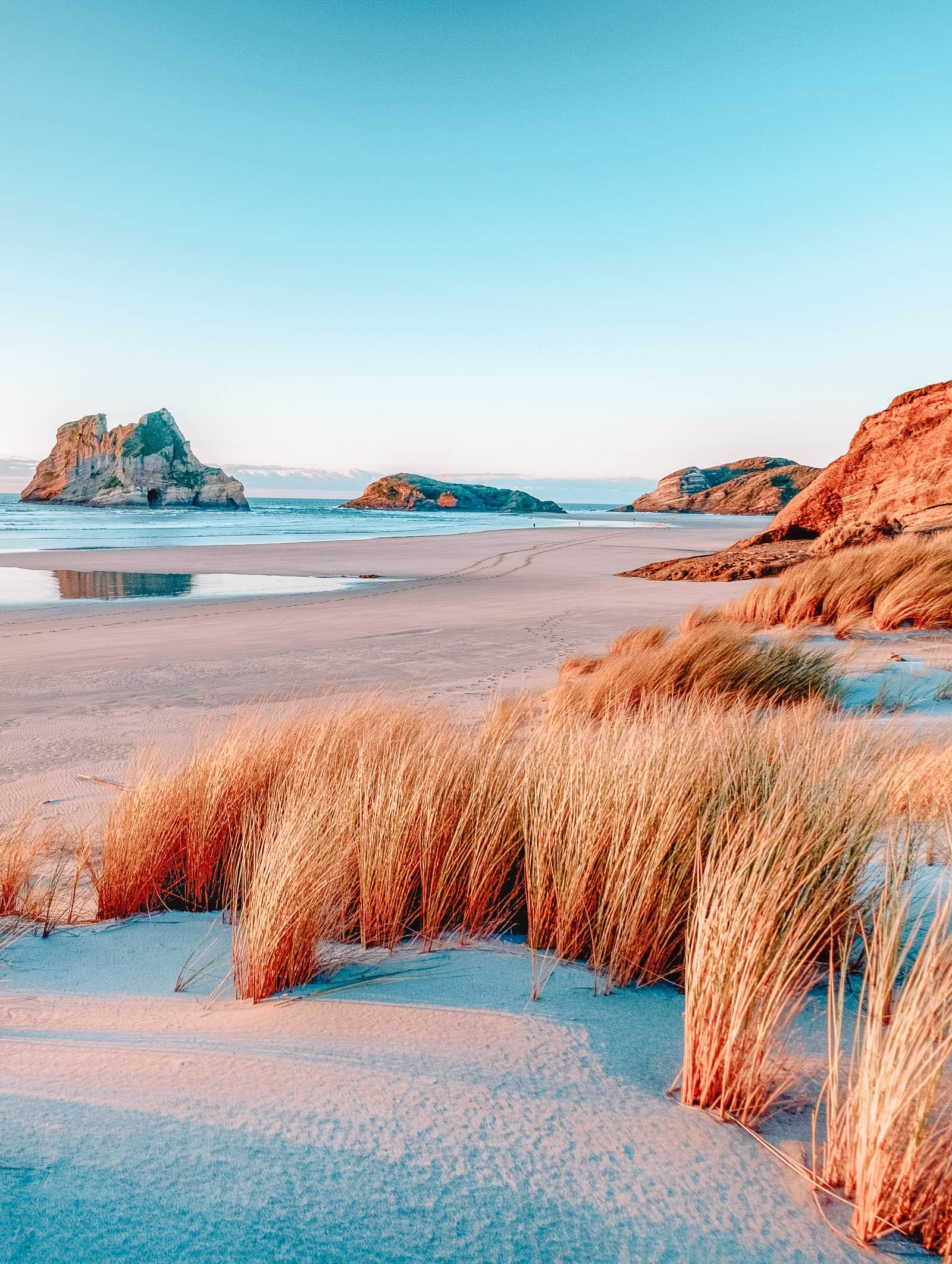 Best Beaches In New Zealand (27)