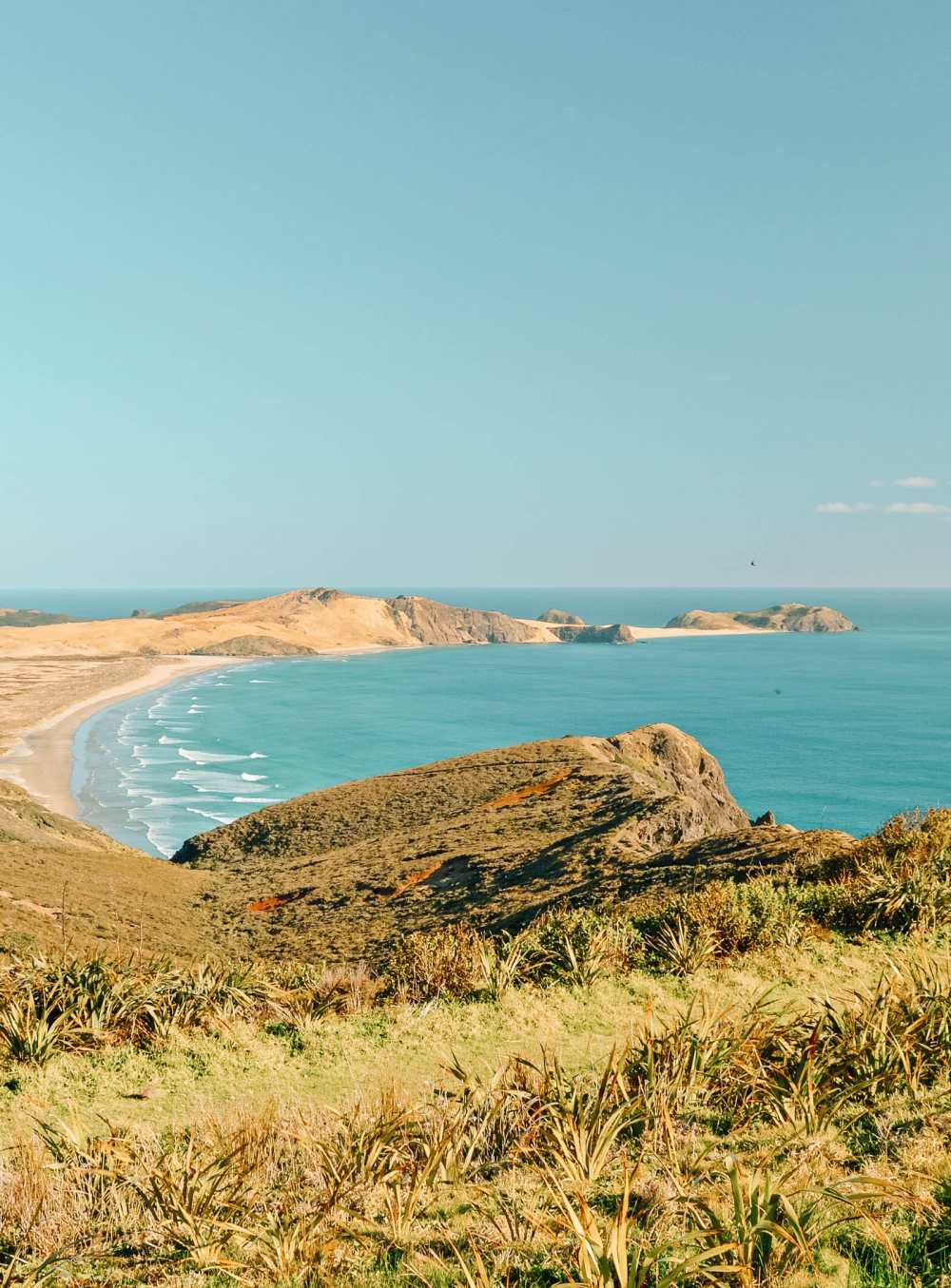 Best Beaches In New Zealand (36)